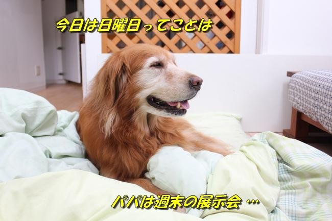 パン新聞会談 081