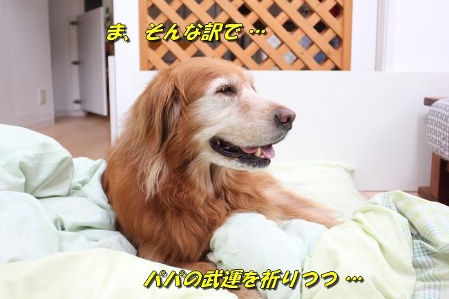 パン新聞会談 082