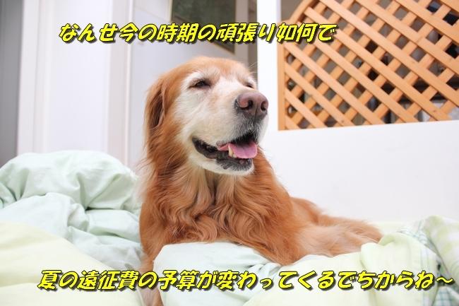 パン新聞会談 084