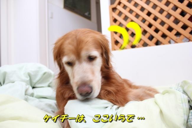 パン新聞会談 085