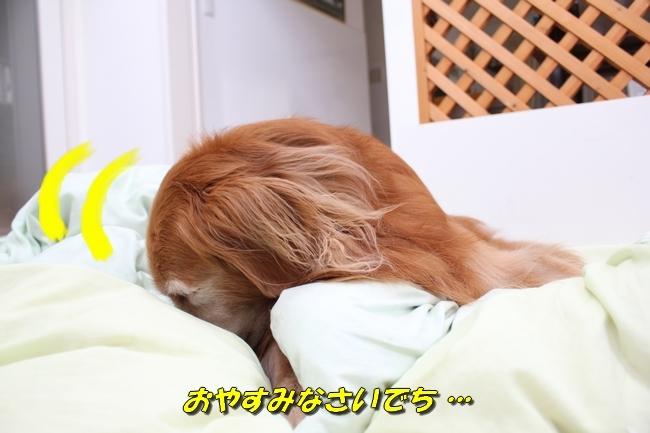 パン新聞会談 086