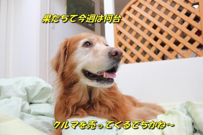 パン新聞会談 088
