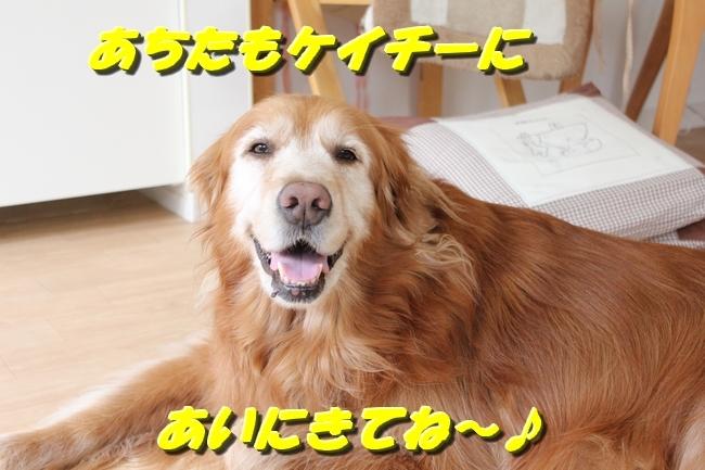 パン新聞会談 04512