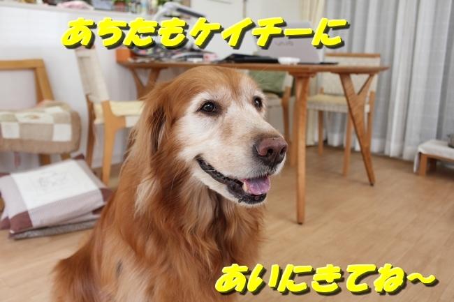 パン新聞会談 073
