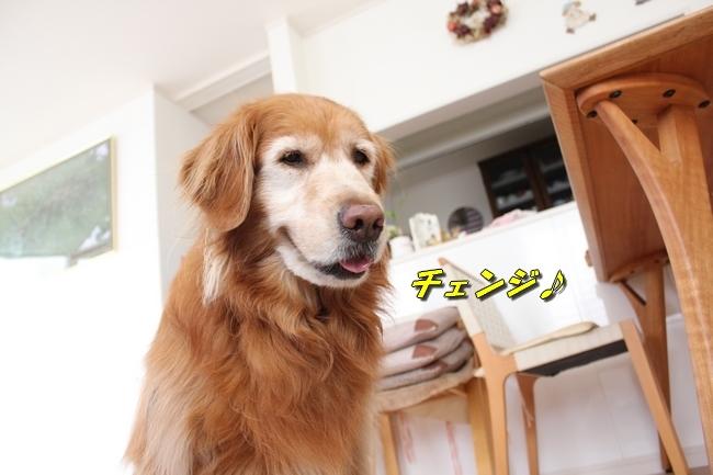 パン新聞会談 108