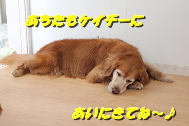 寝る 008