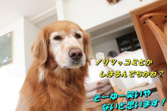 パン新聞会談 115