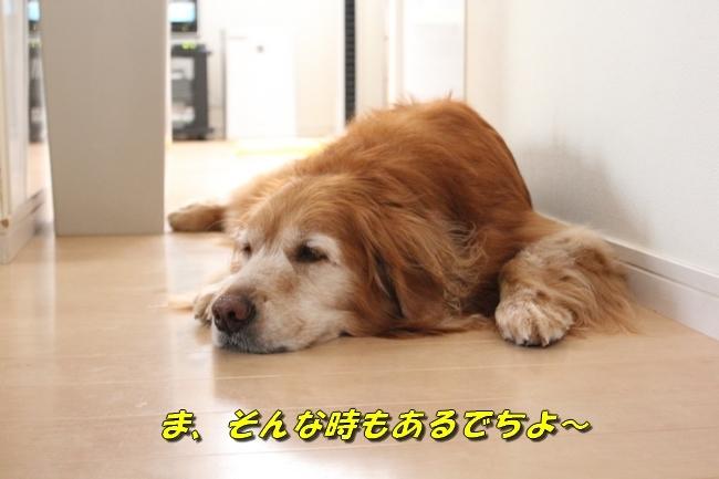 寝る 003
