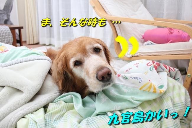 寝床 012