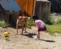犬と子供💛型抜