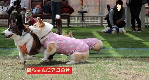 凪ちゃんにアゴ