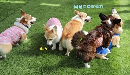 凪ちゃんの勝ち