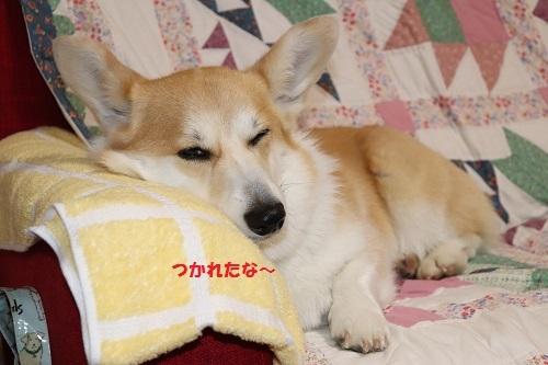 疲れたなぁー