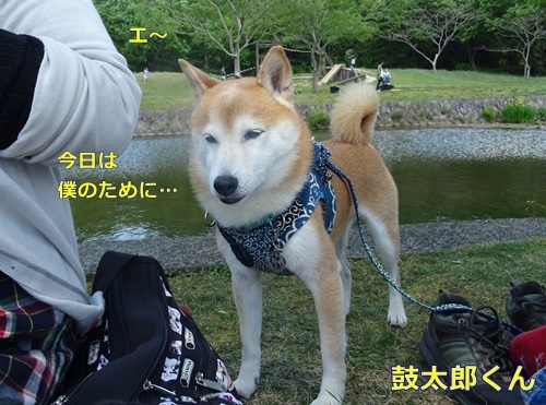 1鼓太郎くん