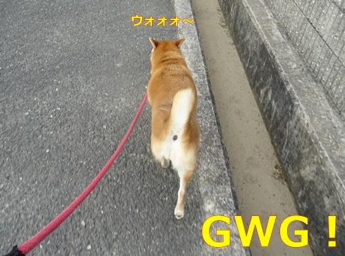 3GWG.jpg
