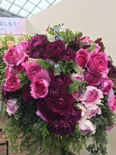 20180518_62_バラの香りコーナー(ダマスク)