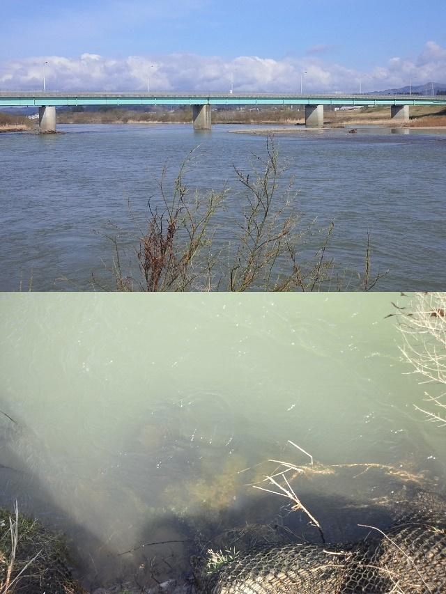 4月17日 新真中橋 水位0、51