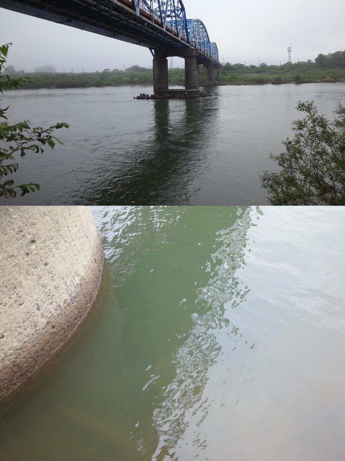 6月3日 米白橋 水位0、09