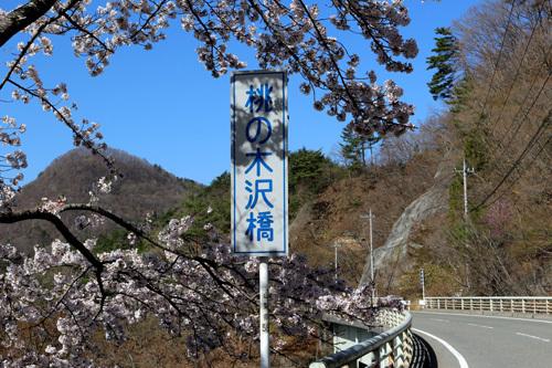 20180410 荒川ダムの桜 入口 (2)