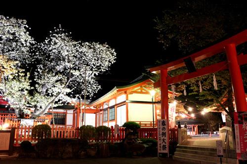 20180421 金櫻神社の鬱金桜 (20)