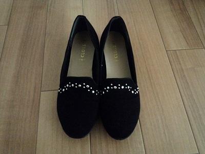 手持ちの靴 (2)