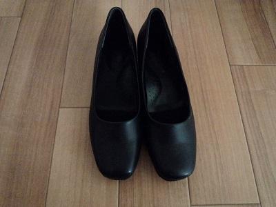 手持ちの靴 (3)