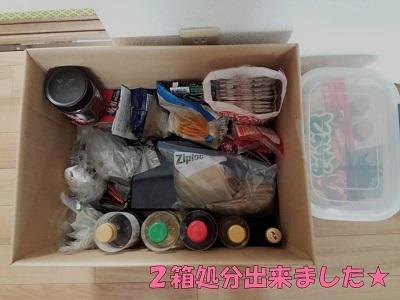 食品収納箱周り (2)