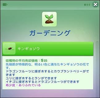 PC144-9.jpg