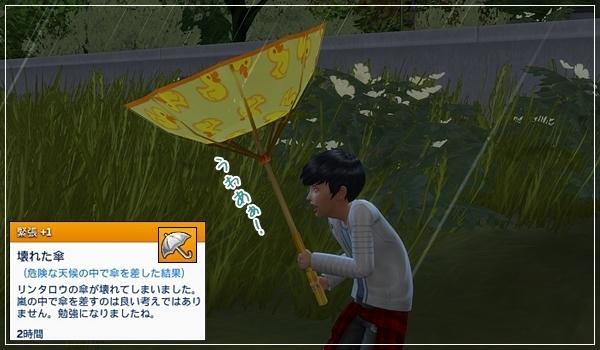Sea_K1-25-1.jpg