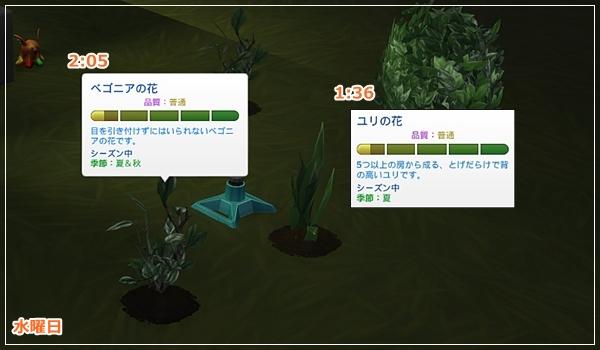 Sea_K4-35.jpg