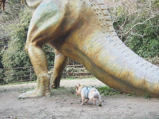 恐竜に会う9