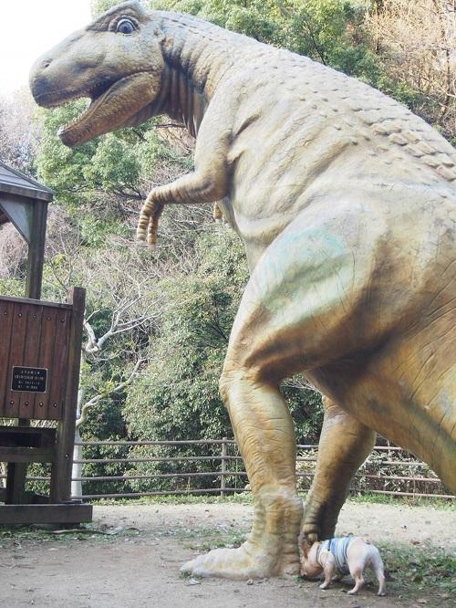 恐竜に会う10