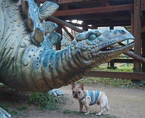 恐竜に会う11