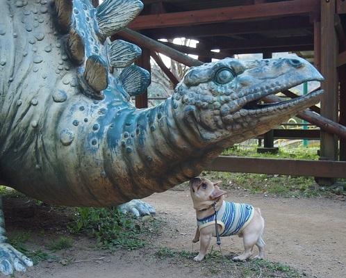 恐竜に会う12