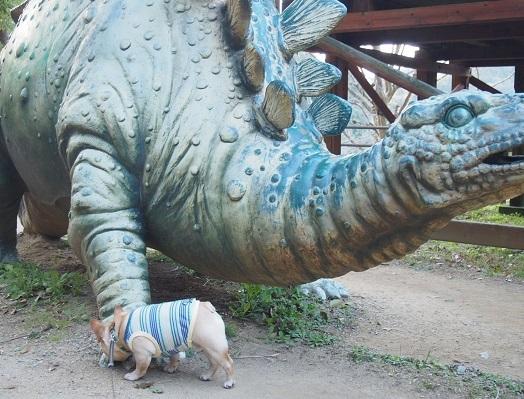 恐竜に会う13