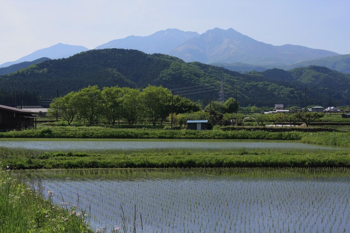 日光連山と水田18①