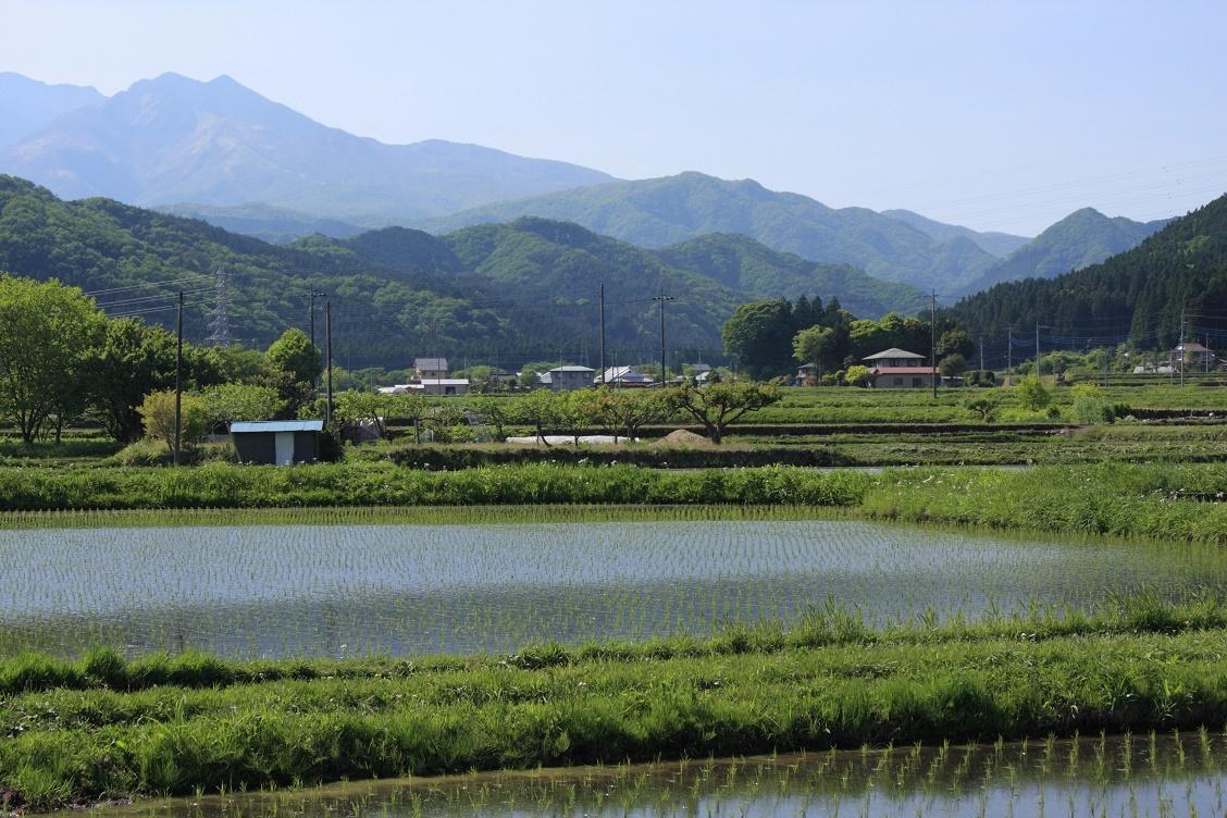 日光連山と水田18②