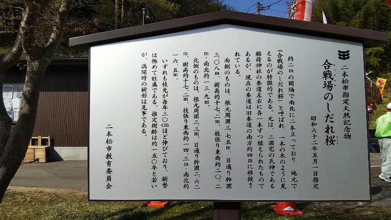 合戦場のしだれ桜案内図180422