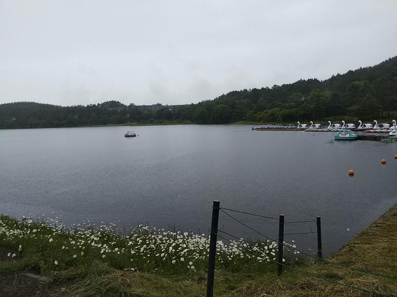 女神湖1806