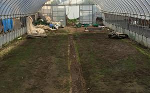 水稲の育苗が終わり、片付けた後のハウス内