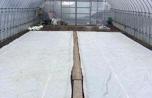 水稲のプール育苗の準備の様子