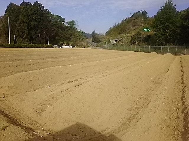 第一圃場敷き込み完了