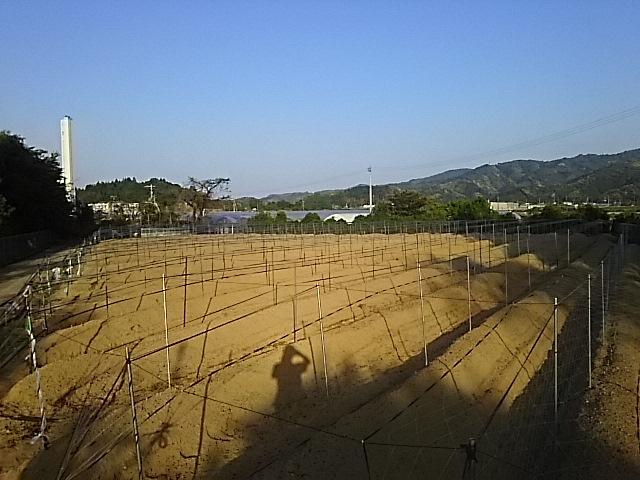 第一圃場完成