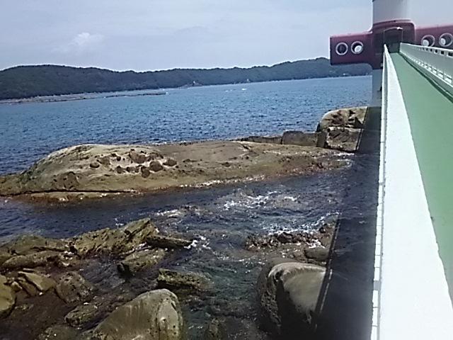 展望台竜串 海中