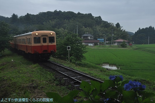 DSC_4104.jpg
