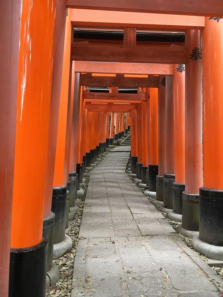 京都伏見稲荷鳥居
