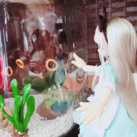 2018-05-18-ヴェル水槽②