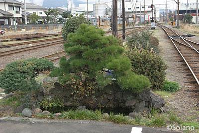 岳南鉄道・比奈駅、プラットホーム端の池庭