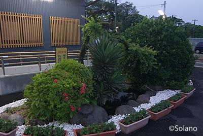 JR久大本線・小野屋駅、残された池庭