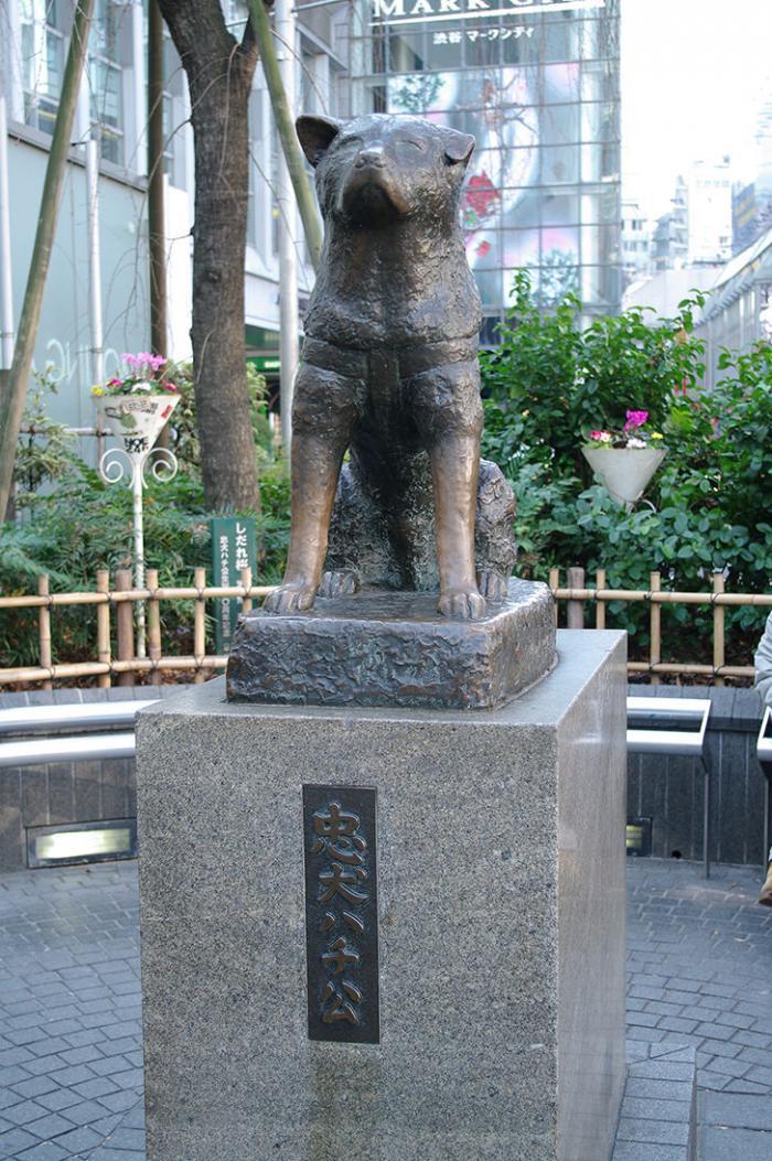 ハチ公前広場・渋谷・東京・2013・12・14・12時17分・700px・フォトック